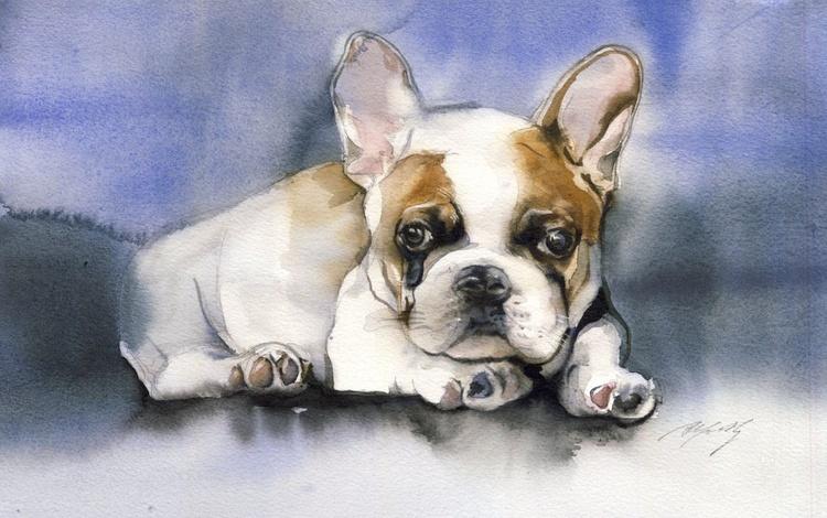 Puppy love - Image 0