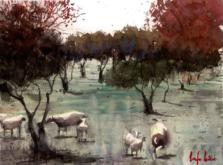 Sheeps on the Meadow -
