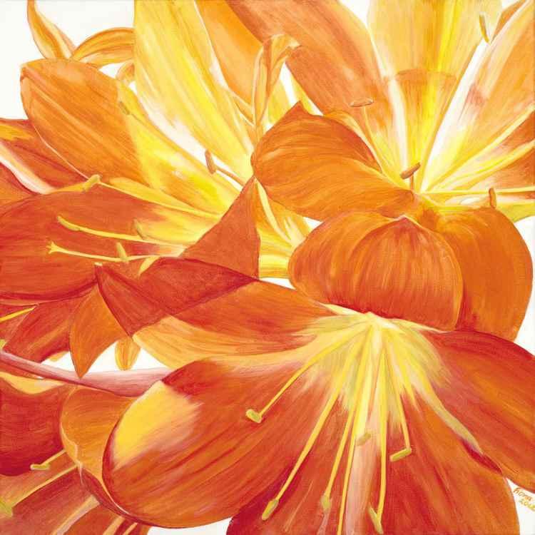 Orange Glow -