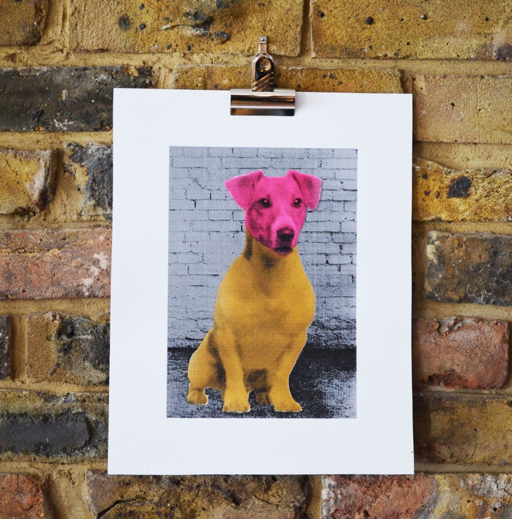 Forget calm, Get a Jack Russel ! - Pink and Brown - Image 0