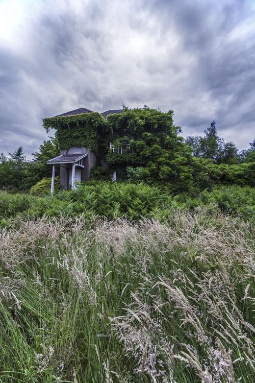 Abandoned house #1 - Image 0