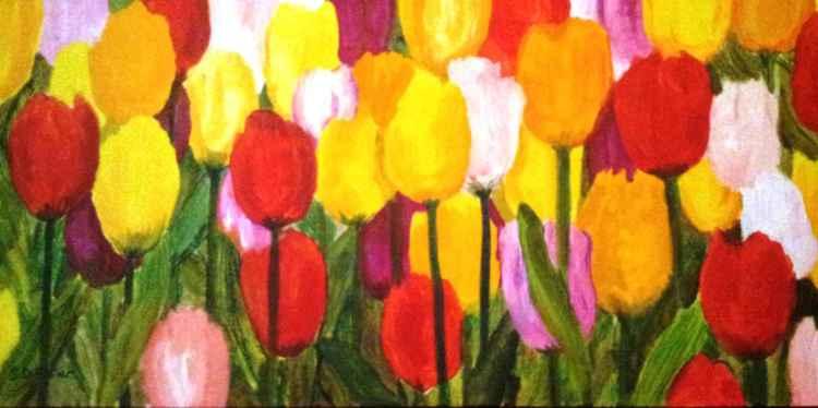 Tulips Bright -