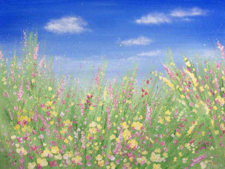 Wild Flower Meadow -