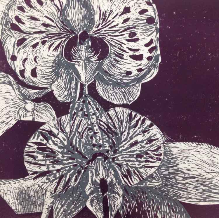 Wild Orchid -