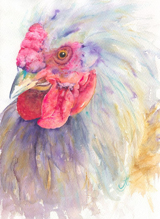 Who ya callin Chicken ??? - Image 0