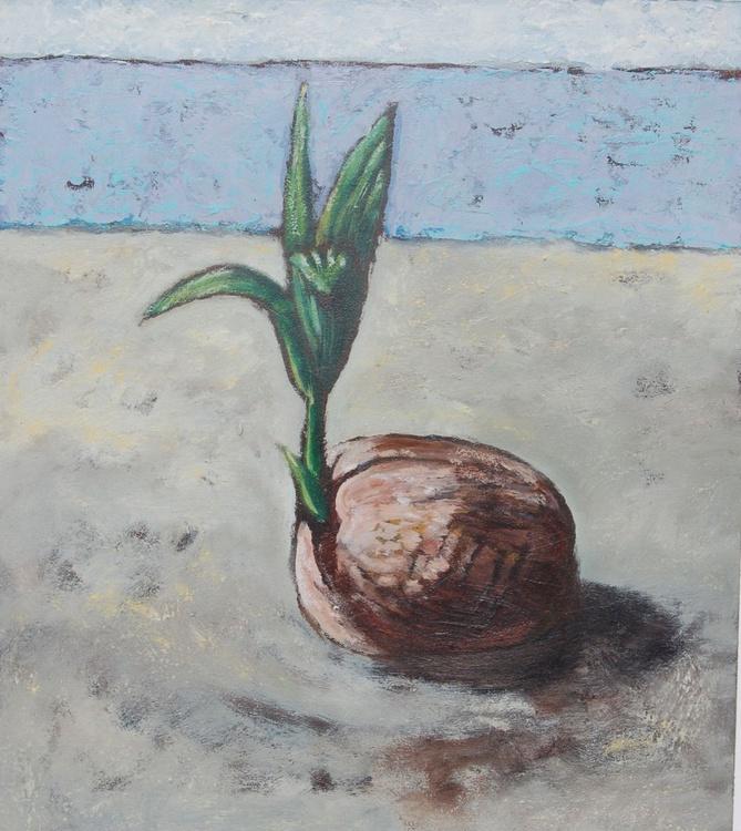 """Seedling"" 3/6 - Image 0"