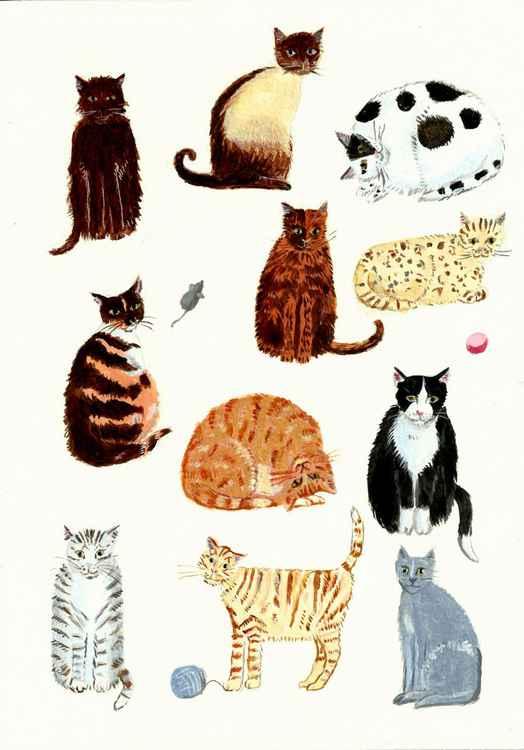 Cute Cats -