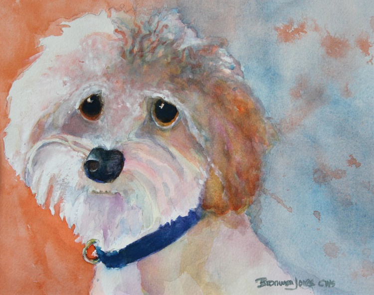 Woof and Whimsy - Image 0