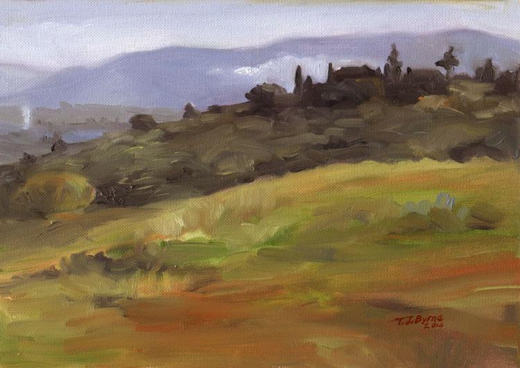 Tuscany in the Impruneta region - Image 0