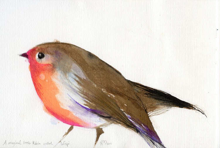 A magical little robin called Wisp - Image 0