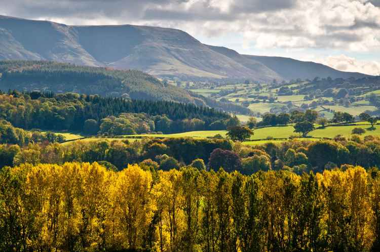 Black Mountains viewed from Cilcenni Dingle -