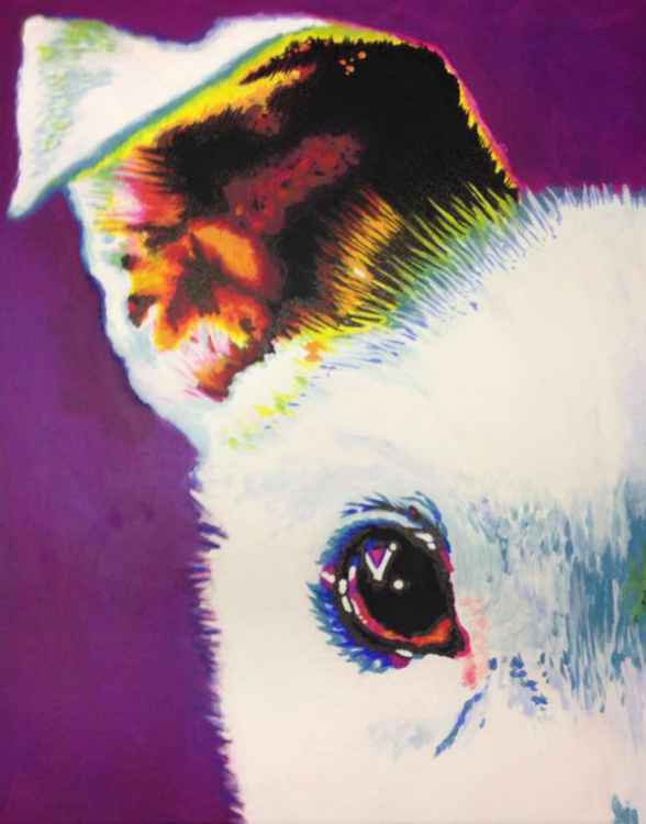 Original Painting of 'Snowy Ear' by Kirstin Wood -