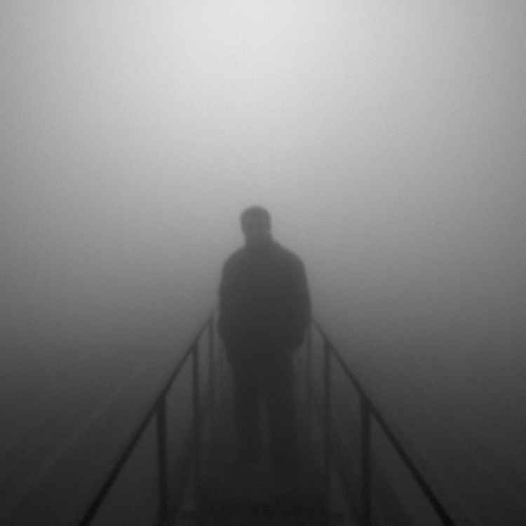 The mist -
