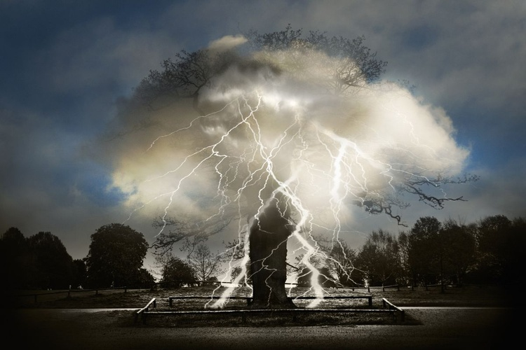 Lightning Tree (Ltd Edition of only 20 Fine Art Giclee Prints from an original photograph) - Image 0