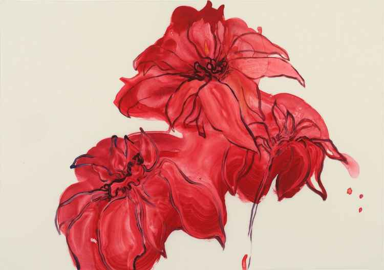 Red Dahlia -