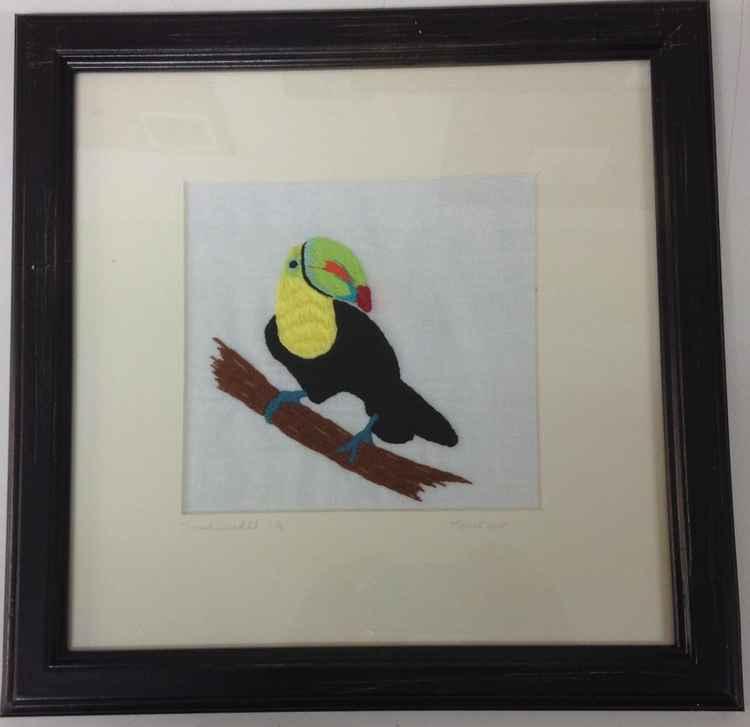 Toucan -