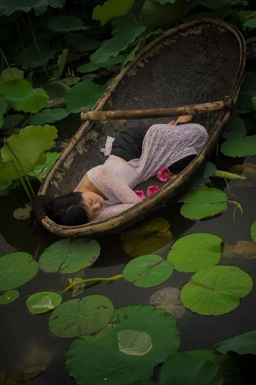 The Lotus Lake V - Image 0