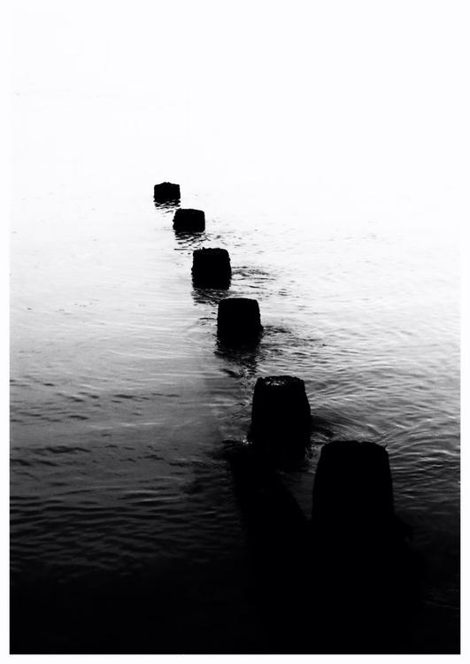 White to Black - Image 0