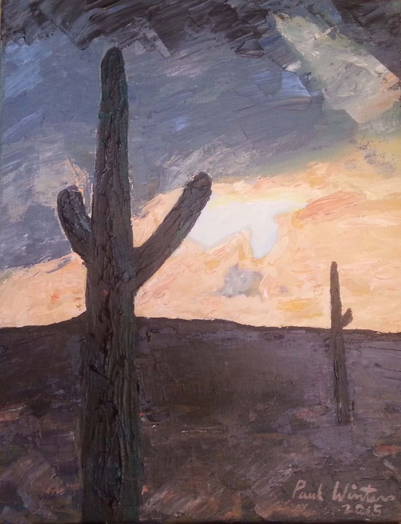 Sunset in the Sonoran Desert - Image 0