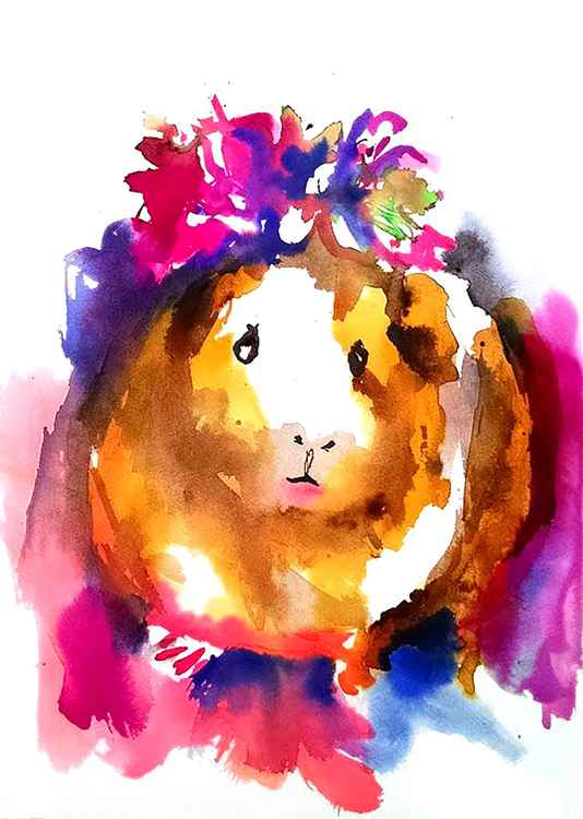 Guinea Pig in the Spring -