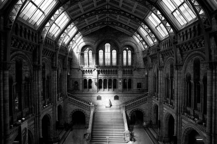 Natural History Museum -
