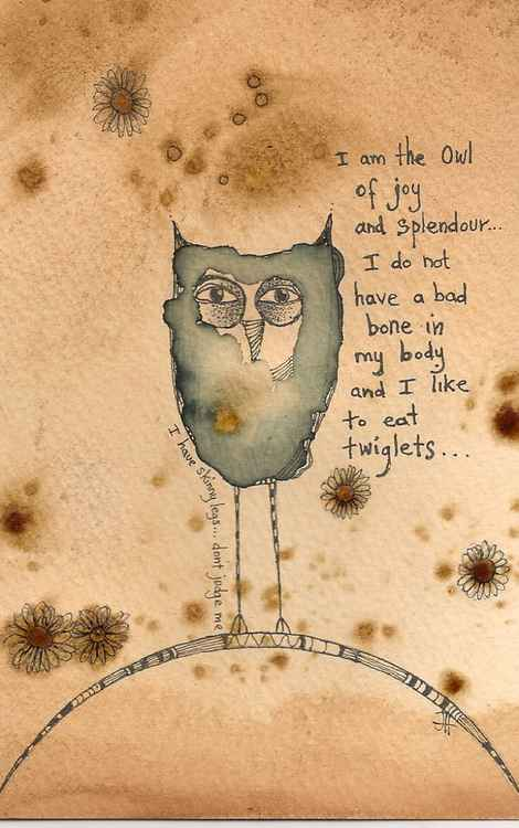 The Owl Of Joy And Splendour -