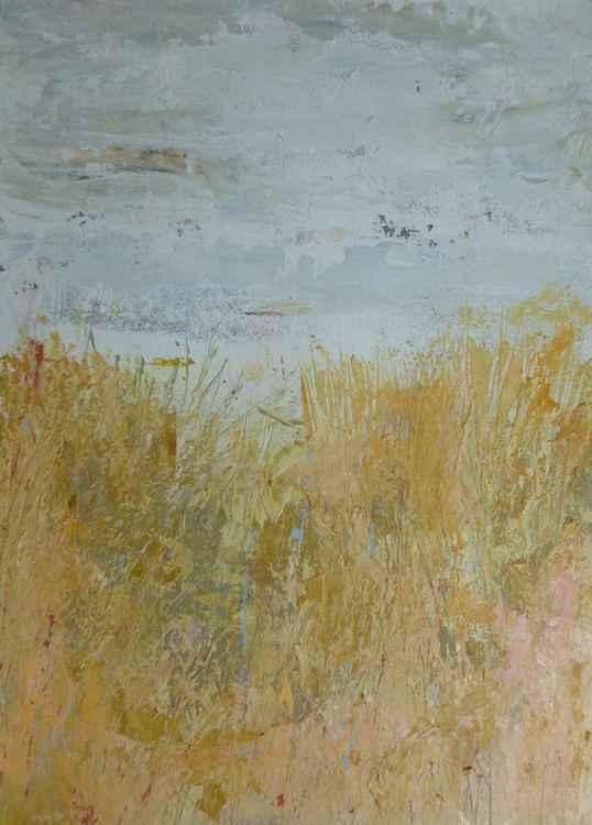 Sandy Grasses -