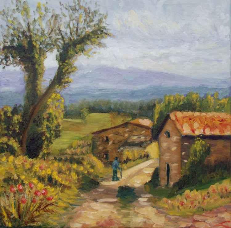 Tuscany farm road -