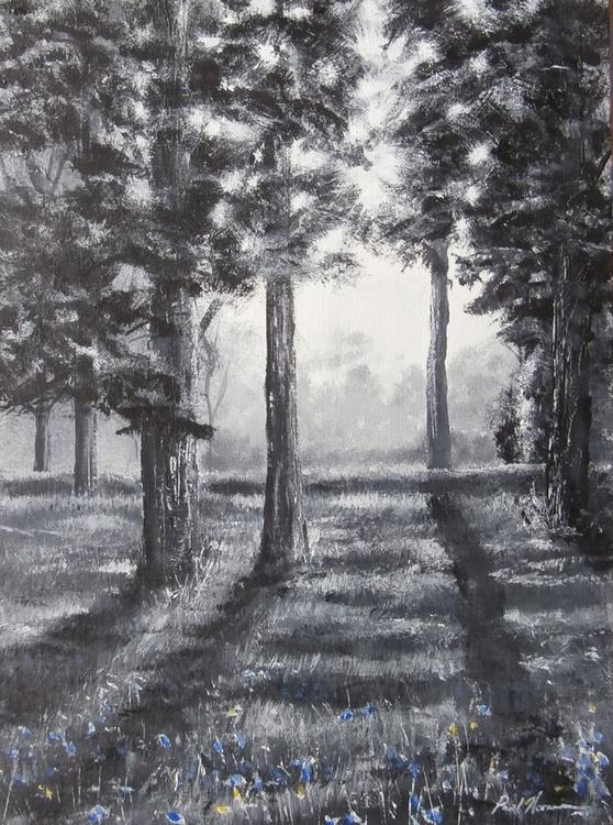 Spring Woodland Light - Image 0