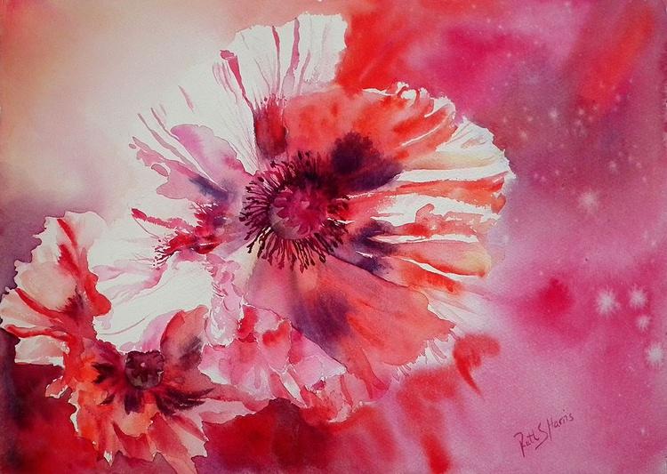 Cosmic Poppies - Image 0