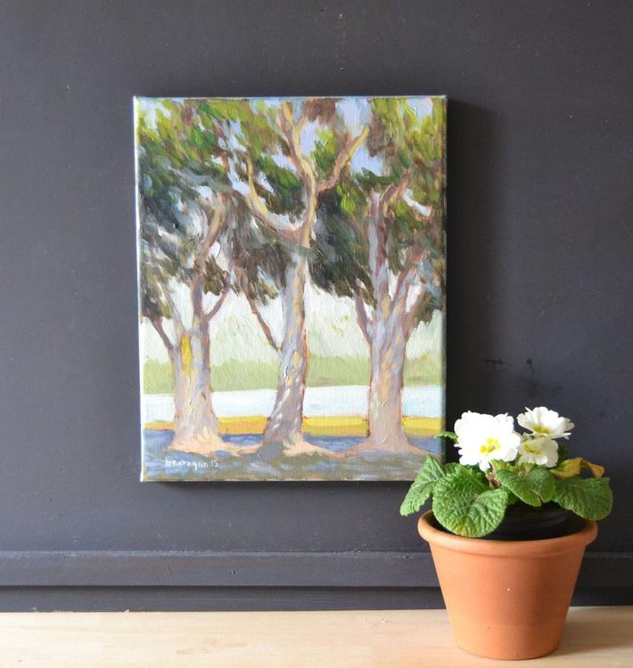 Eucalyptus Trees in Placentia California Plein Air Oil Painting - Image 0