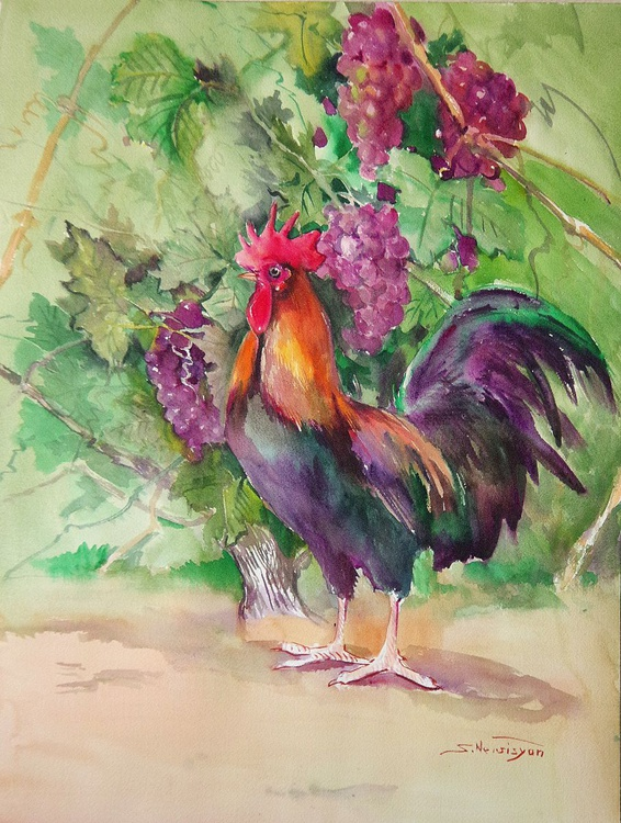 Rooster And Grapes - Image 0