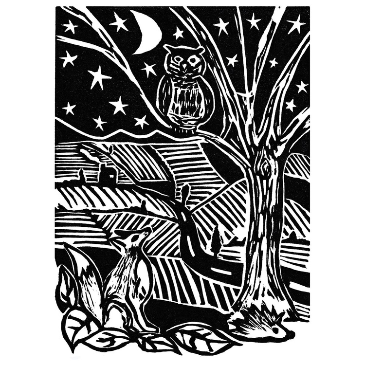 Fox and Owl - Image 0