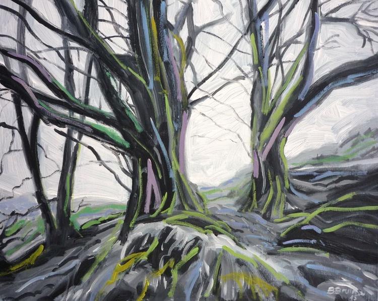 Beech trees in winter, Exmoor - Image 0