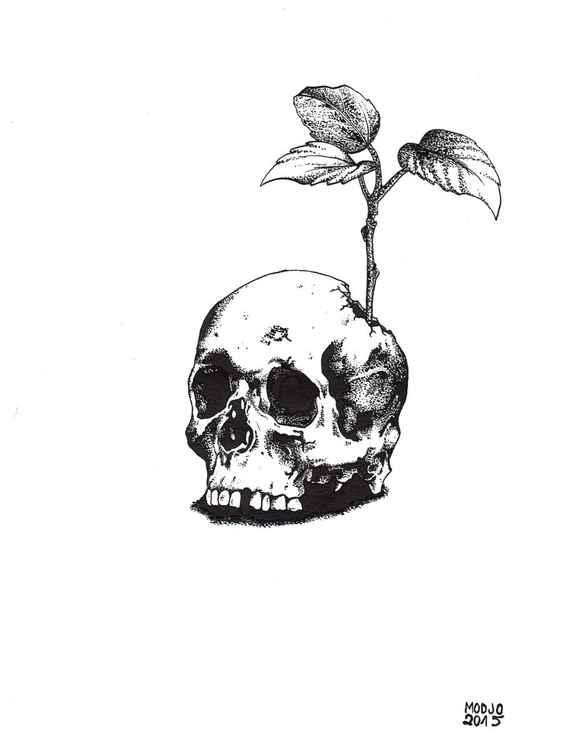 Skull's Plant