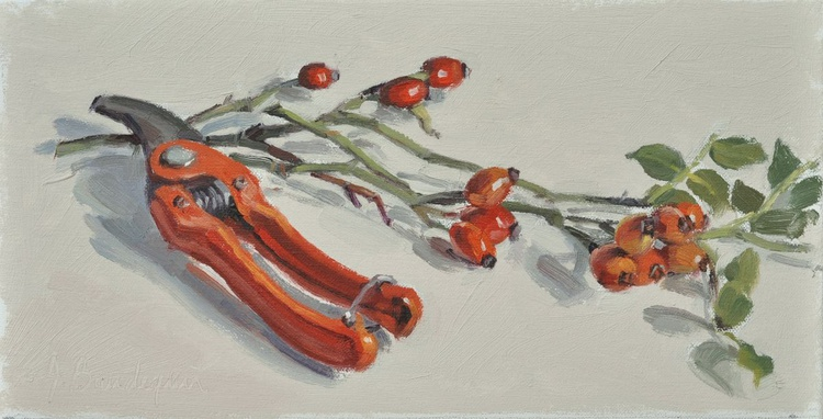 Rose hips and secateur - Image 0