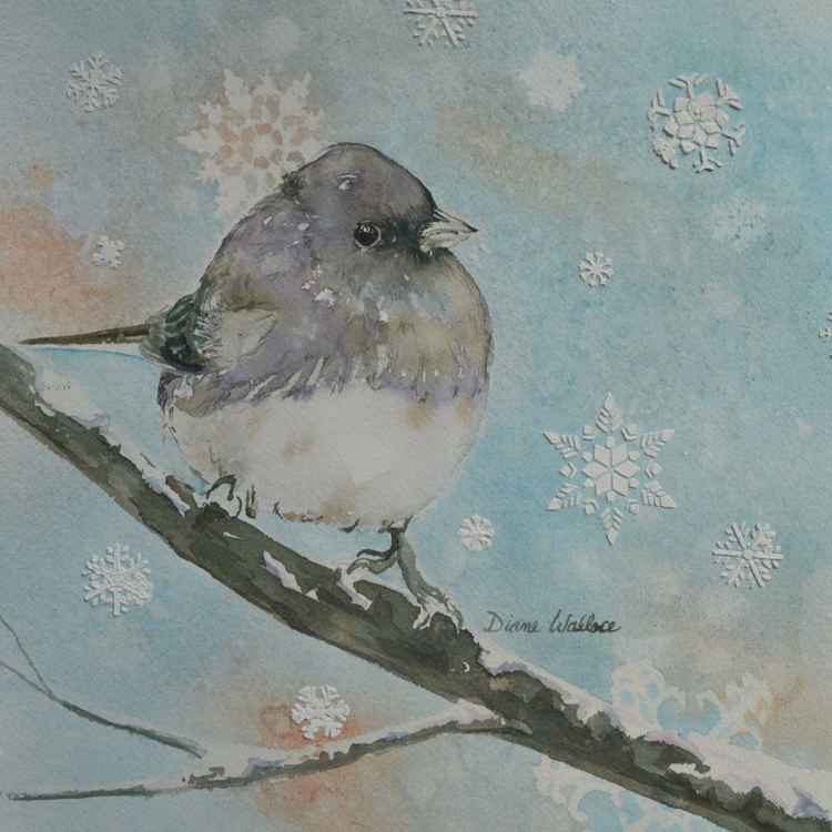 Snowbird -