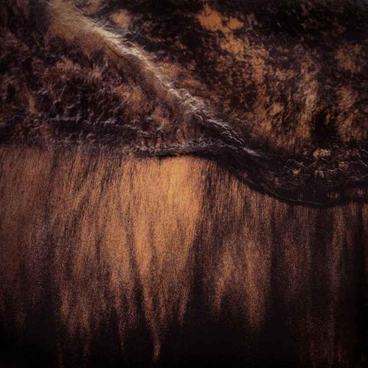 Longsands #7