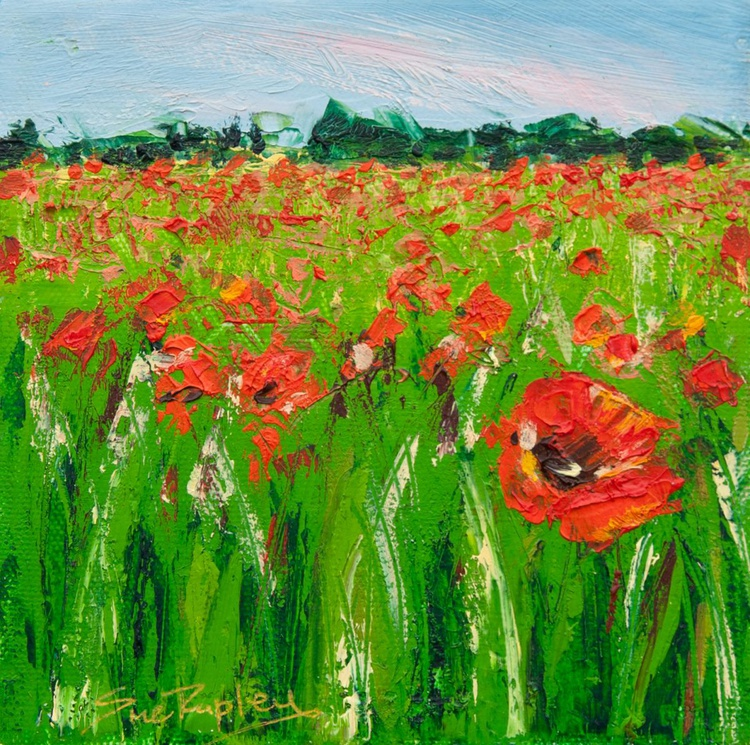 Field of Red - Image 0