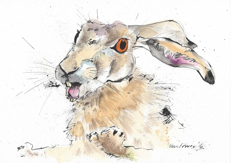 Hare - escape, watercolour and ink - Image 0