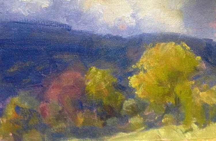 trees 'n hills -