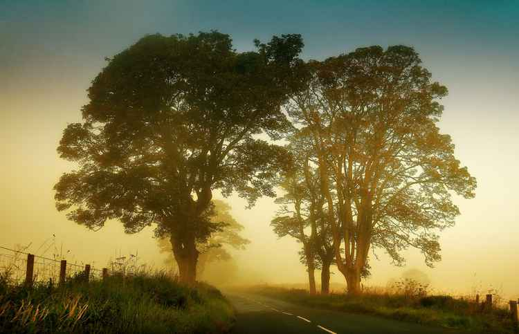 Twilight Guardians. Misty Roads Of Scotland (Ltd Edition of only 10 Fine Art Giclee prints from an original photograph)