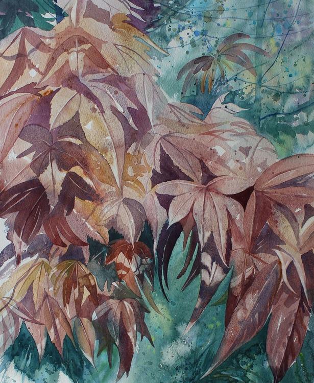 Autumn Acer - Image 0