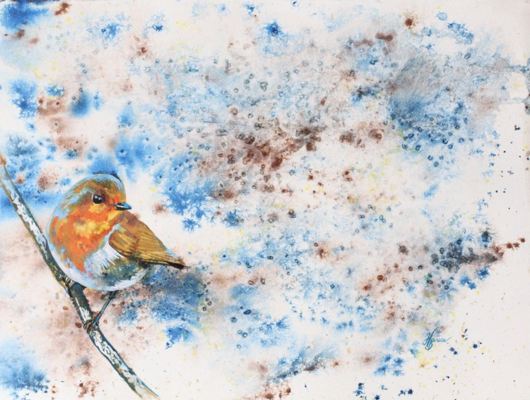 Robin - Image 0