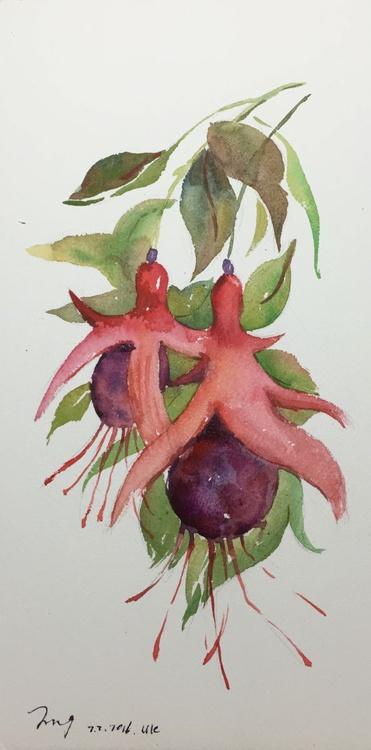 Begonia - Image 0