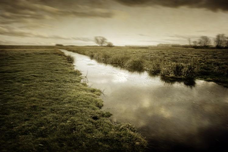 Marshland - Image 0