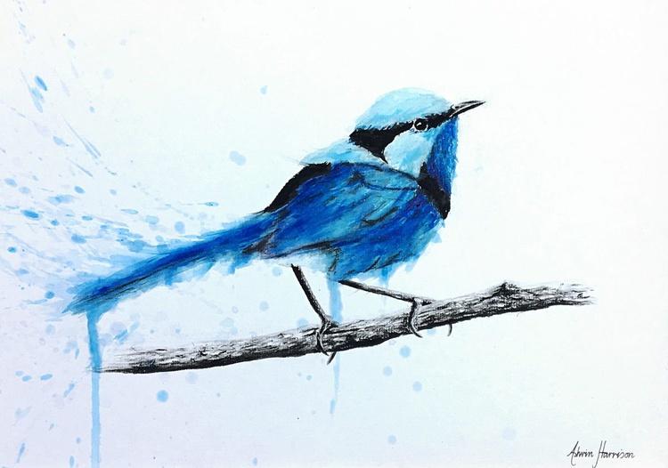 Blue Wren Thinking - Image 0