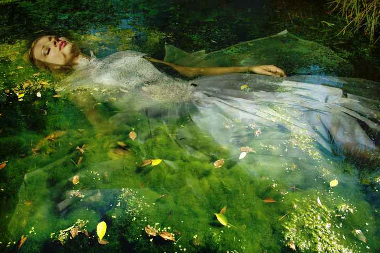 Take me to your dreams Ophelia IV -