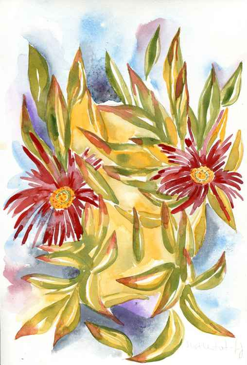 Original Watercolour Painting of British Wild Flower Hottentot Fig