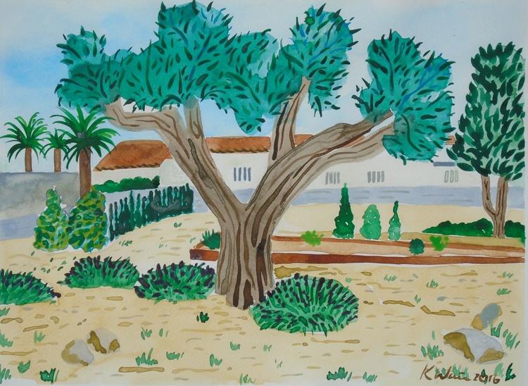 Olive tree in  Carabineros Jardin - Image 0